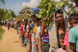 A line of hundreds of Rohingya refugees awaiting entry to a camp in Bangladesh